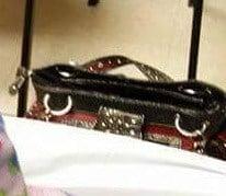 Judith Lopez' stolen purse.