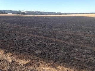 Fire crews estimate it burned 30-40 acres in a hay field.