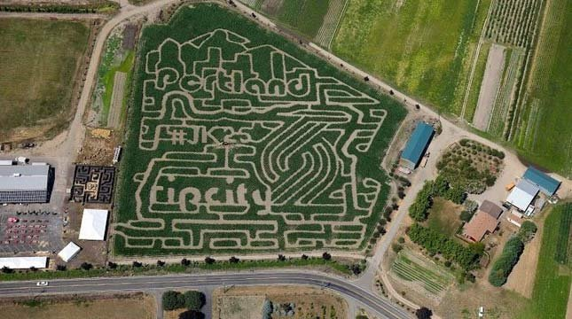 Bella Organic Farm corn maze in honor of Jerome Kersey. (Photo: Bella Organic Farm)