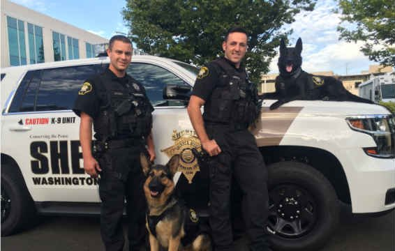 K9 Chase (left) and Tux (right) with their handlers