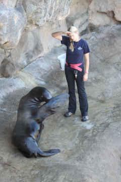 (Photo: Oregon Coast Aquarium)