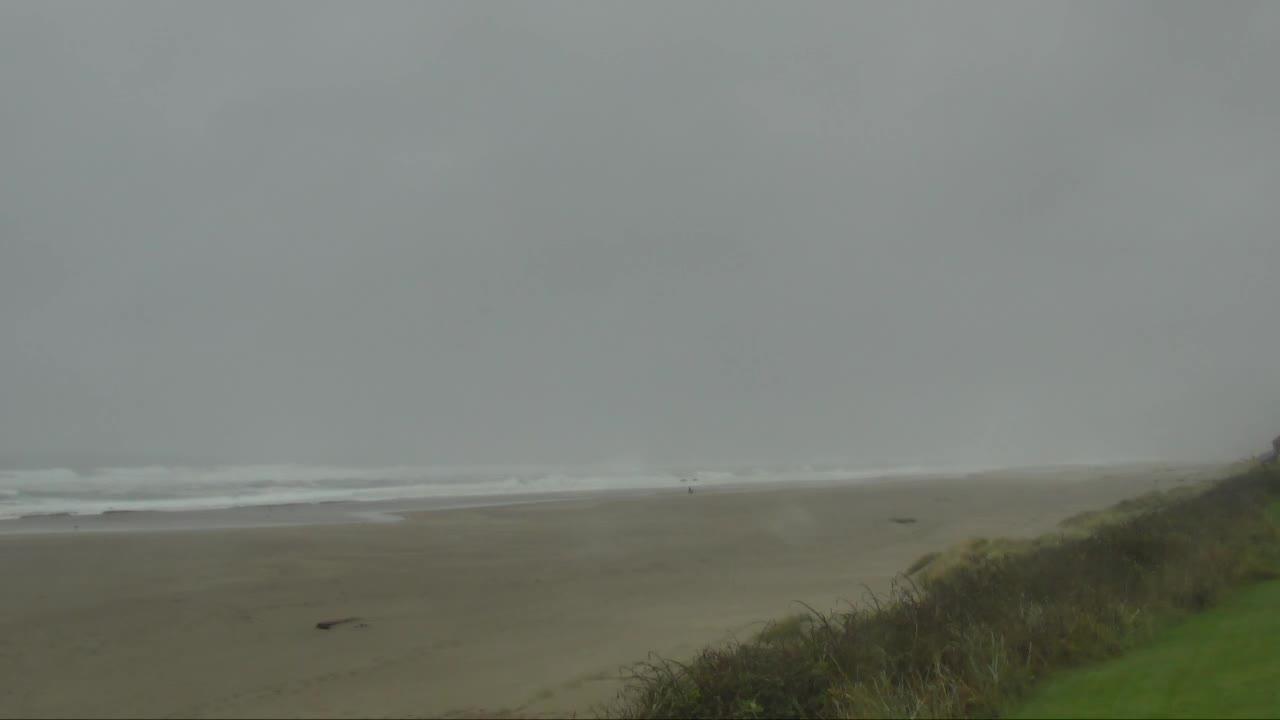 FOX 12 beach cam