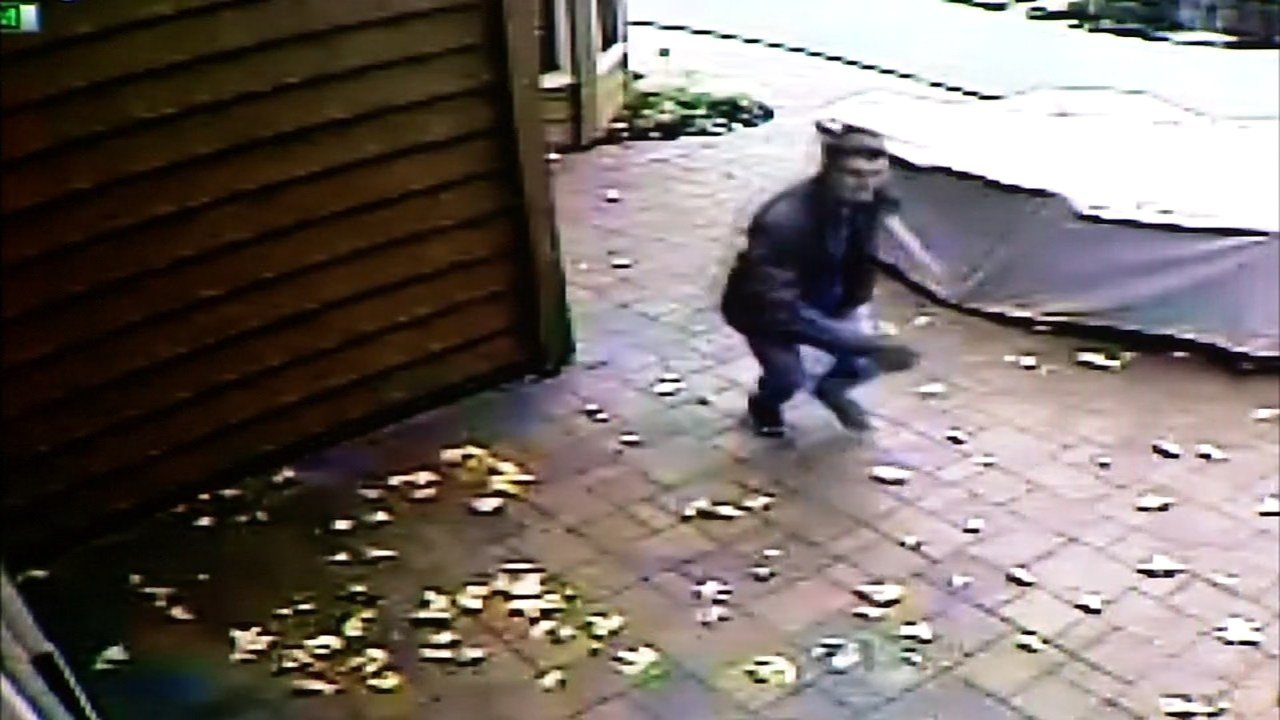 Surveillance picture of prowler.