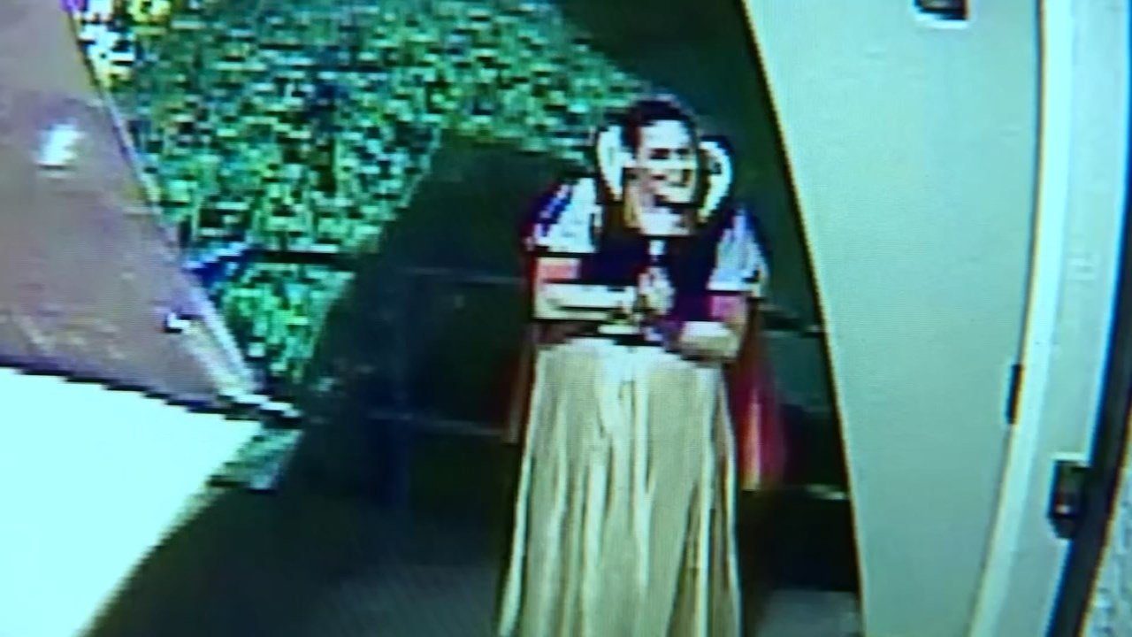 Woman dressed up as Snow White caught on surveillance.