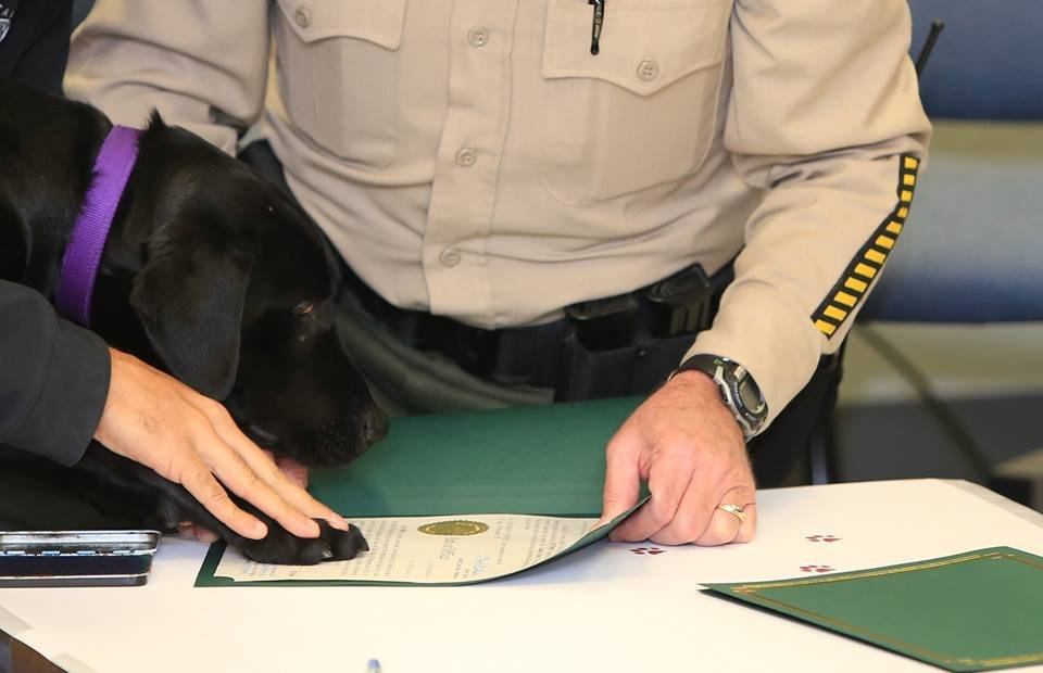 Piper becoming commissioned, courtesy of the Clark County Sheriff's Office.