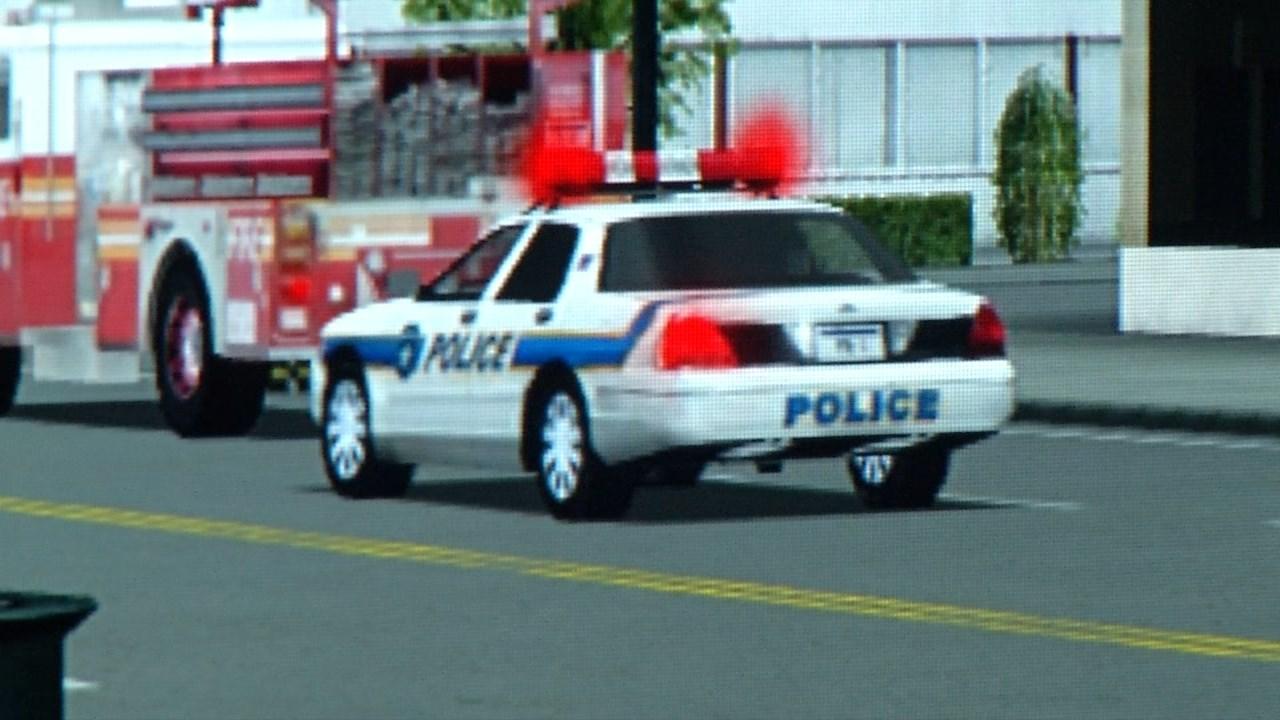 Homeland security simulation