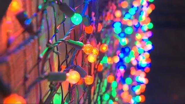 Intel employees donate to FOX 12 Toy Drive, get early look at ZooLights