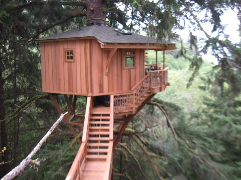Tree house built by Animal Planet host Pete Nelson on the Oregon coast. (Photo: Construction Contractors Board)