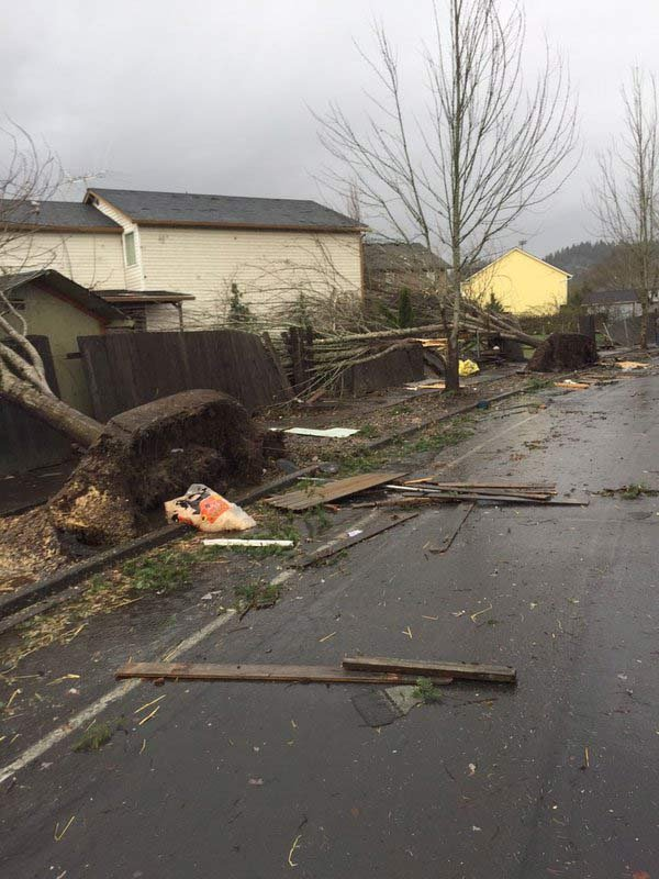 Photo of damage from possible tornado (Courtesy: Mike Peck)
