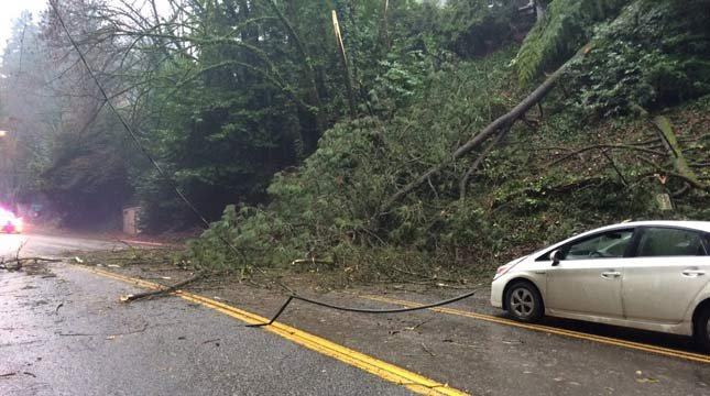 Downed power lines on W. Burnside (Photo: Portland Fire & Rescue)