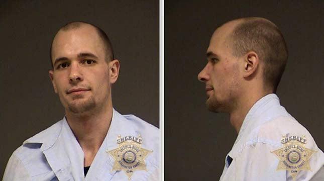 Michael Siegwald, jail booking photo