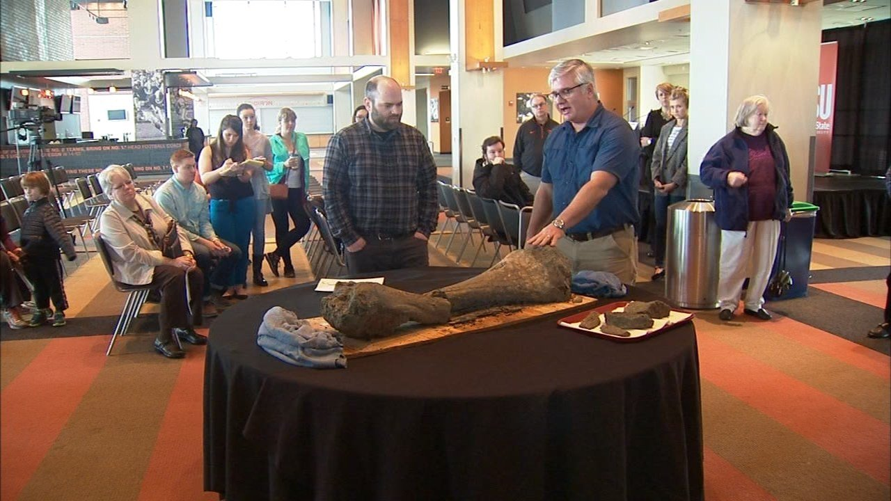OSU professor Loren Davis (right) presents bones found under the school's football field (Photo: KPTV)