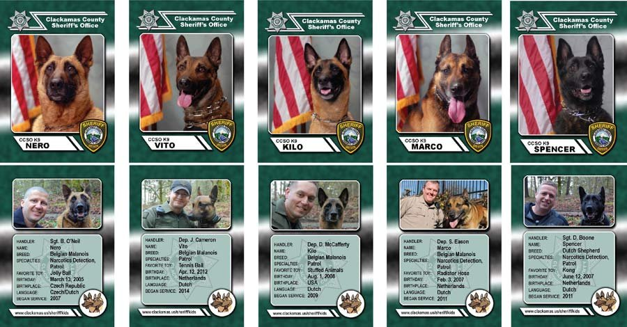 Clackamas County K9 trading cards (Photos: Clackamas County Sheriff's Office)