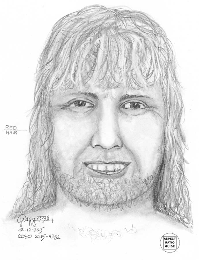Sketch of serial exposer suspect released by investigators in February 2015. Police said Michael Dick was believed to be wearing a wig.