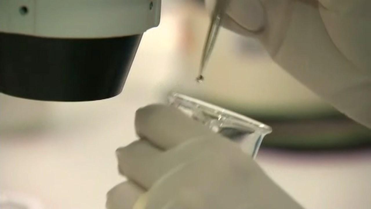 Zika testing (file image/CNN)