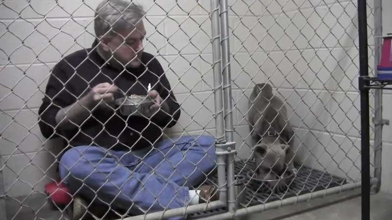 Dr. Andy Mathis eats with Graycie (Photo: Dr. Andy Mathis/Granite Hills Animal Care)