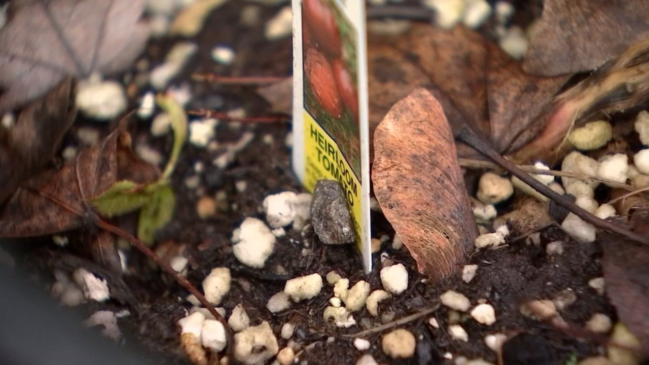 State and Multnomah County health officials are warning people living near two glass makers to avoid eating produce and herbs grown in their yards.