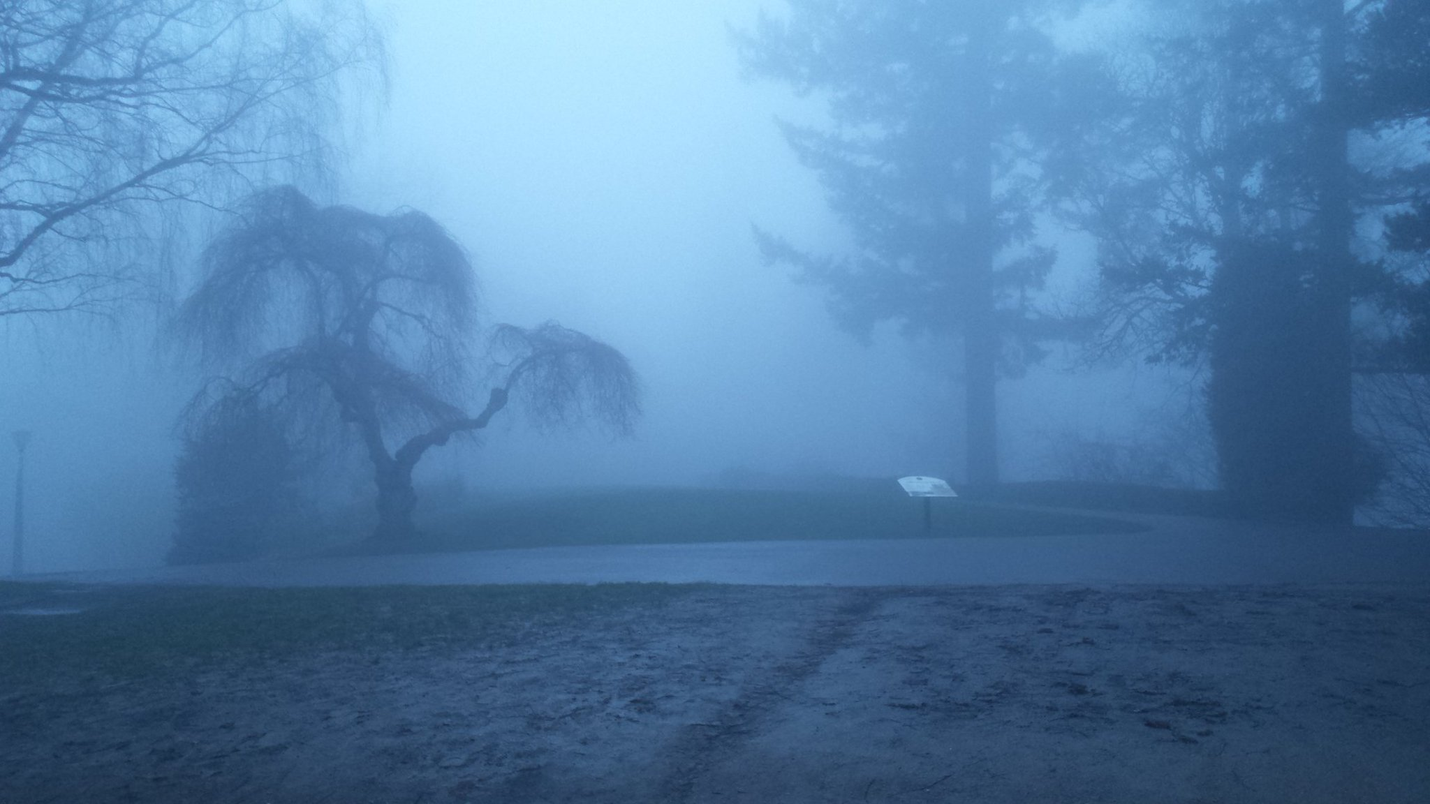 Foggy morning at Pittock Mansion (Photo credit: Anthony Congi, KPTV)