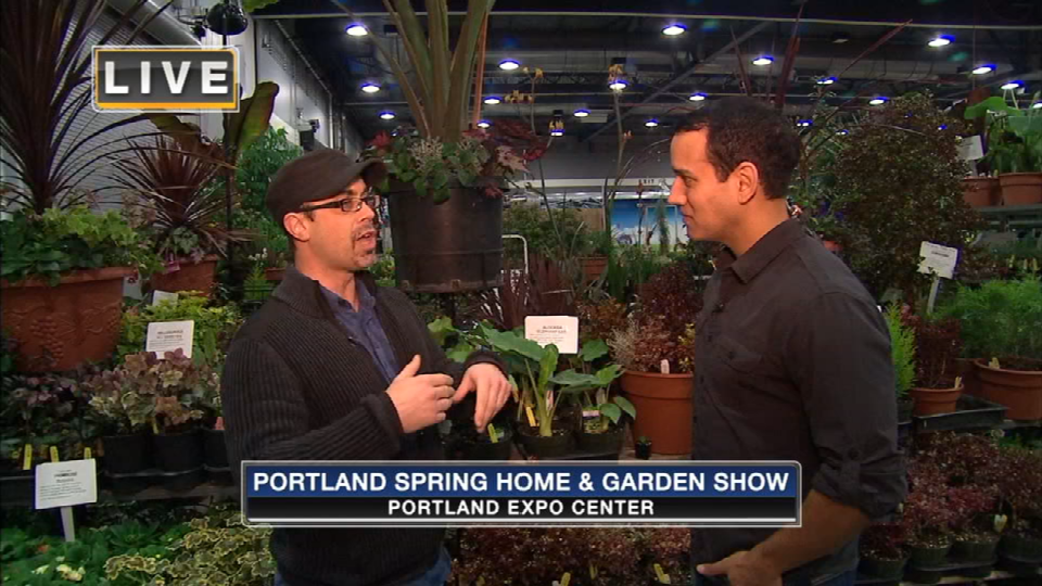 On The Go With Joe At The Portland Spring Home Garden